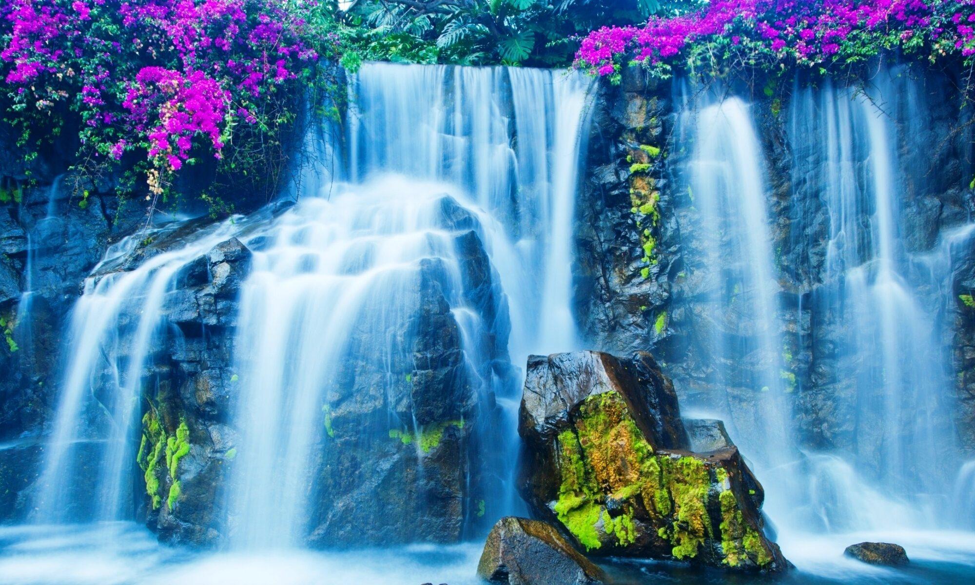 Woda Plazmowana NANTES Z Podwyższoną zawartością tlenu singletowego
